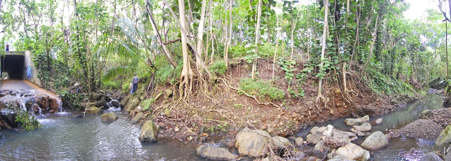 Panorama image of Wiamanalo Stream.