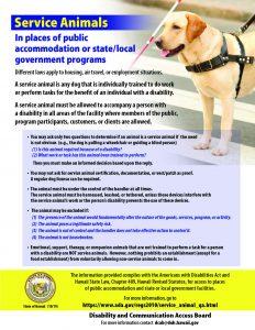 Service Animal Flyer