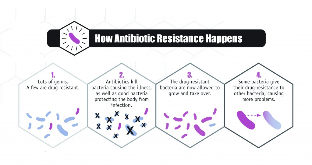 How-Antibiotic-Resistence-Happens