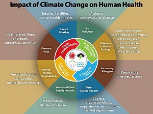 The Centers for Disease Control & Prevention (CDC) prepared this diagram illustrating the negative consequences of climate change.