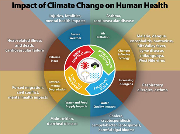human impacts on global environmental change Monitoring health impacts of climate change and key messages by taking action on climate change you are protecting human other global environmental change.
