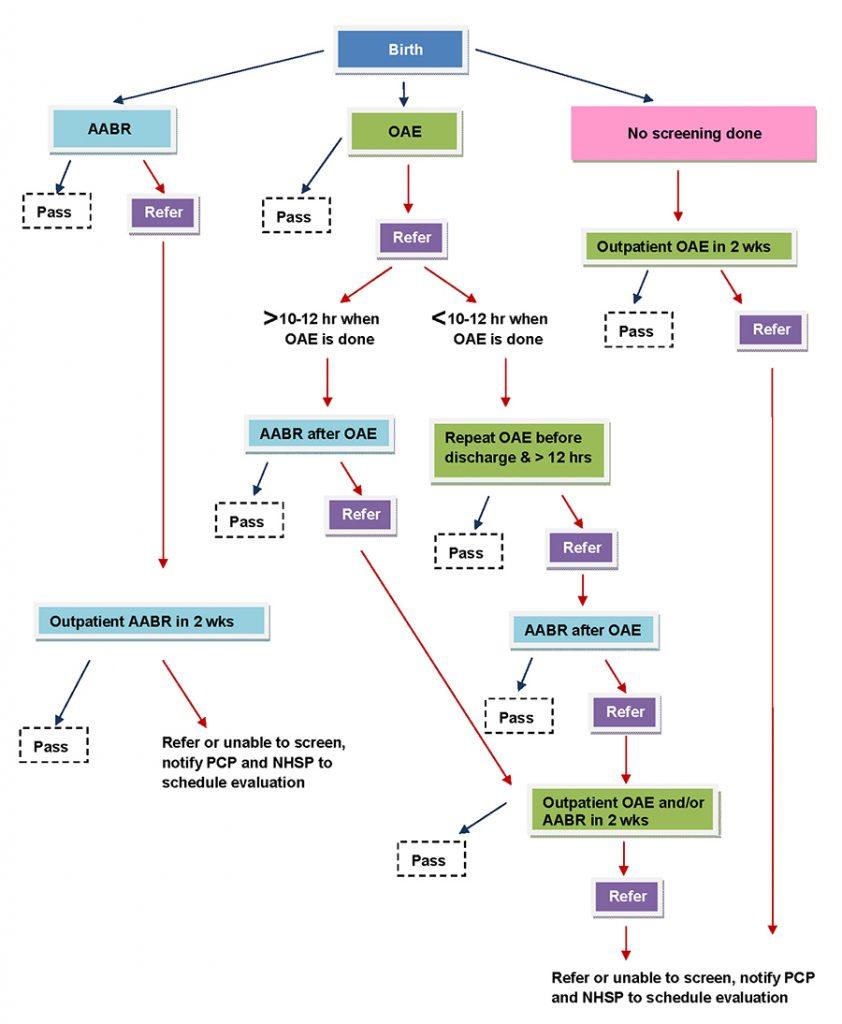 NBHSP_Guideline_Flowart_REV