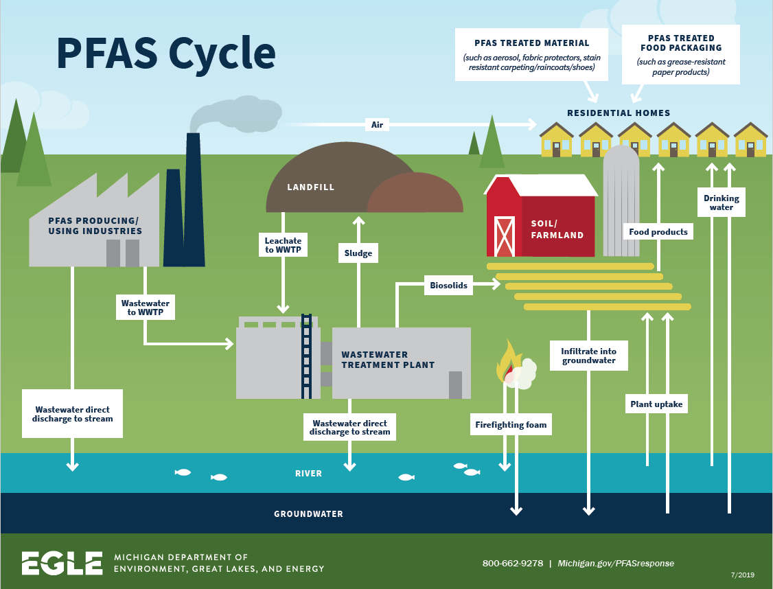 PFAS Cycle in the Environment