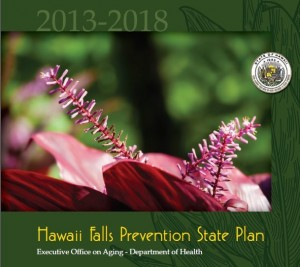 Cover of the Hawaii Falls Prevention Plan 2013-2018