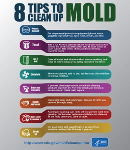 graphic gives tips to clean up mold, especially airing out wet items so they can dry within 24 to 48 hours, throwing out things that do not dry out within 24 to 48 hours, using fans and dehumidifiers to remove moisture, and protecting yourself with gloves, masks, and goggles.